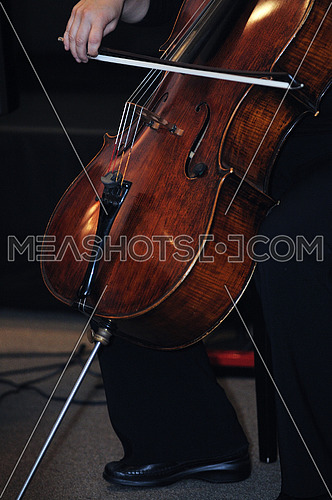 classical music bass instrument player orchestra