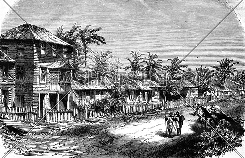 A Village in the tropics, vintage engraved illustration. Magasin Pittoresque 1876.
