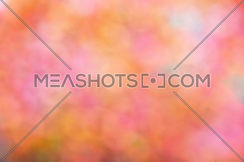 Colorful rainbow palette festive glitter tender bright magic light circles abstract blur effect background
