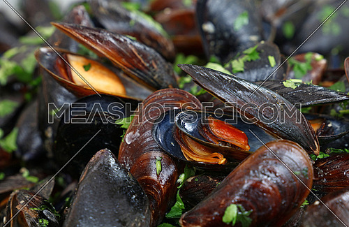 Steamed and roasted mussels with herbs, close up, low angle view