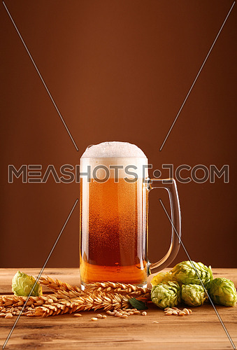 Close up one glass mug of beer with froth and bubbles, green hops and barley grain and spikes on wooden table over dark brown background with copy space, low angle side view