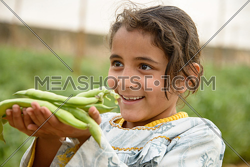A girl holding raw broad beans in her hands فول حيراتي