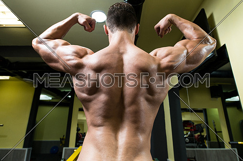 Close Up Of Sports Man's Muscular Back