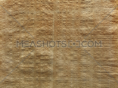 Old vintage antique brown beige natural papyrus (biblus, paper reed) background texture close up