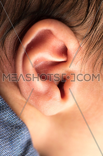 One ear of a newborn baby boy