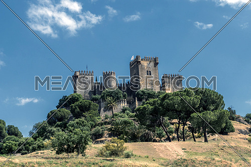 Castle of Almodovar del Rio, It is a fortitude of Moslem origin, it was a Roman fort and the current building has definitely origin Berber, of the year 760, Between the year 1901 and 1936 was restored by its owner, take in Almodovar del Rio, Spain
