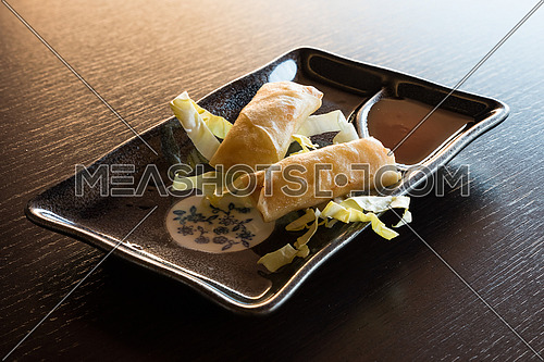 Fried spring rolls with vegetables, served on rectangular ceramic plate with dark background.