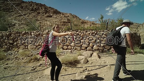 Reveal shot for a group of tourists walking beside a fence of rocks showing almond trees while exploring Sinai Mountain for wadi Freij at day.