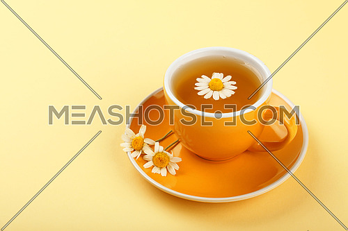 Close up one full yellow cup of herbal tea with camomile flower on saucer over pastel paper background, high angle view