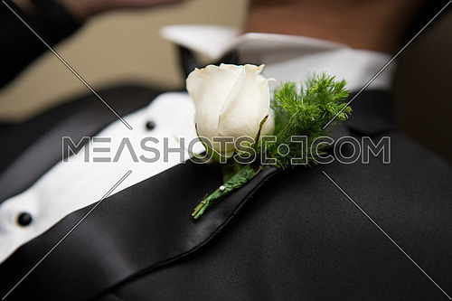 Groom Wearing white shirt and Black bow for wedding Ceremony adding the White Rose to his Toxido