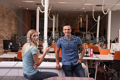 Portrait of startup business couple in a modern office