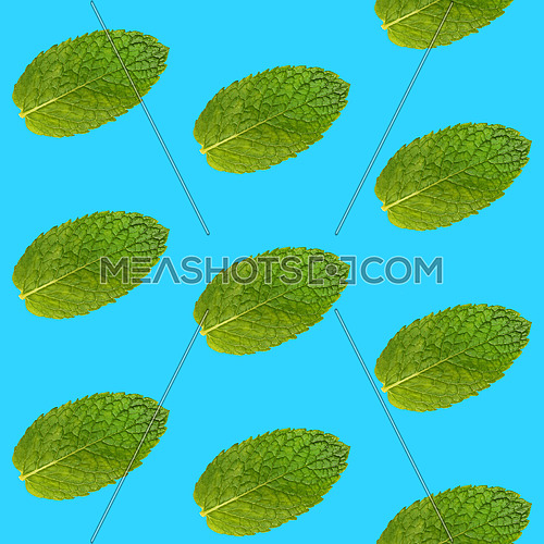 Seamless pattern of fresh green mint leaves on vivid blue background