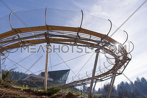 Alpine coaster in beautiful nature
