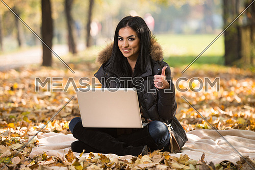 Beautiful Woman Working On Laptop In Park During Autumn Season