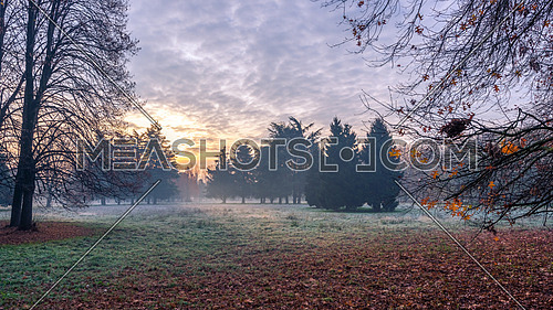 Autumnal cold morning on meadow with hoarfrost on plants and beautiful colors at sunrise,Italy near Milan.