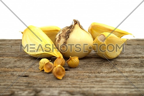 Elephant garlic (Allium ampeloprasum) bulb with corms and separated cloves prepared for planting on a rustic wooden board