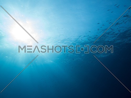 Underwater shot of the Water surface with sun rays