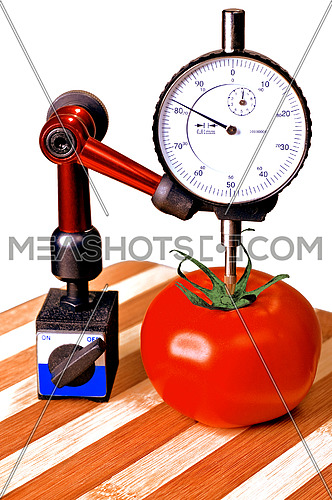 sizing tomato with a dial gauge micrometer