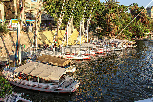 a photo for river Nile and group of sailing boats / felouka in Cairo city , Egypt