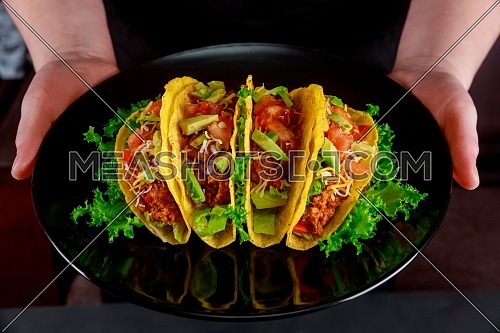 Taco traditional Mexican dish with wheat tortilla folded fresh salad, food lunch. Vegan and vegetarian