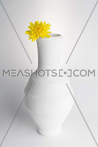 Still life composition of white pottery vase and yellow flower on white background