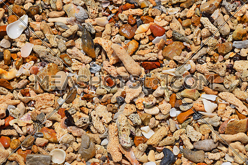 Colorful assorted shells, pebbles, shards, stones, corals and other small sea things and pieces on shore in water under sunshine, close up texture pattern background, top view