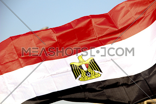 Egyptian flag closeup