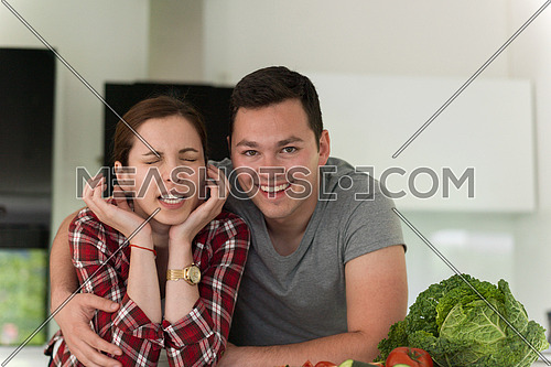 portrait of a young handsome couple in modern kitchen