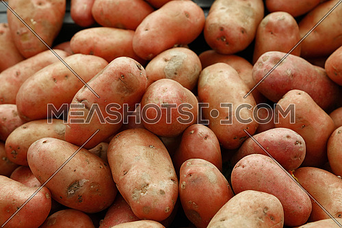 Heap of washed pink new farm potato at retail market display close up, high angle view
