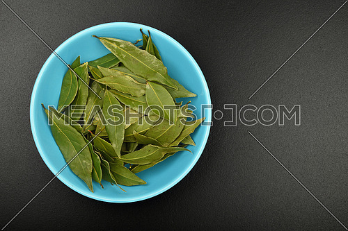 Blue ceramic bowl of bay laurel leaves on black chalkboard background