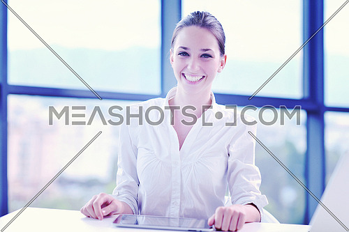 portrait of Young pretty business woman work on  notebook computer  in the bright modern office indoors