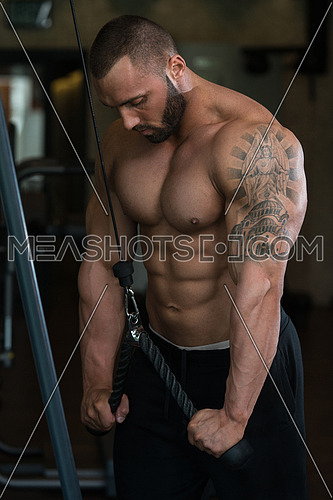 Big Man In The Gym Is Exercising Tricpes On Machine - Muscular Athletic Bodybuilder Model Exercise In Fitness Center