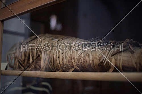 Mummy wrapped up in linen in the Egyptian Museum