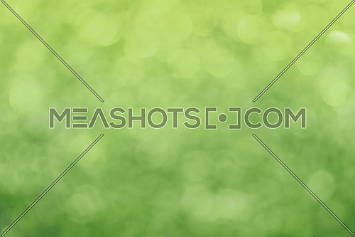 Spring glitter fresh green bright light and greenery bokeh circles abstract blur effect background