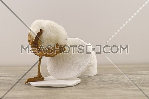 Natural cotton stem boll and stack of makeup remover facial cotton pads. Organic production concept