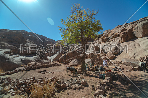 Long shot for a male tourist exploring Sinai Mountain at day. shot for bedouins get water from Ain hudra at Sinai Mountain at day.