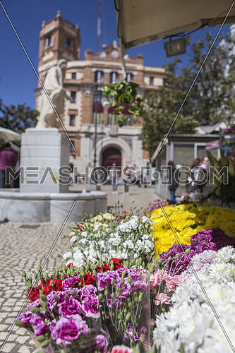 Cadiz flower market (Plaza de las Flores aka Plaza de Topete), with statue and main Post Office behind, take in Cadiz, Andalusia, Spain
