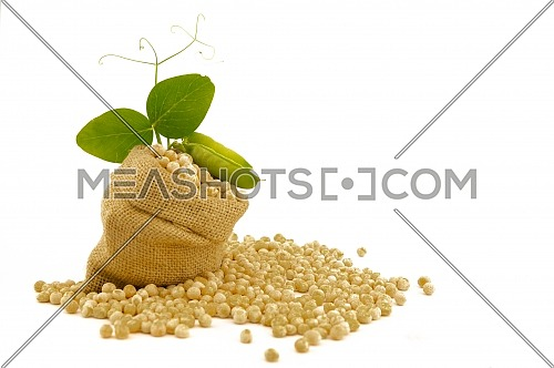 Small hessian bag filled with dried chickpeas spilling onto a white background with green leaves and copy space