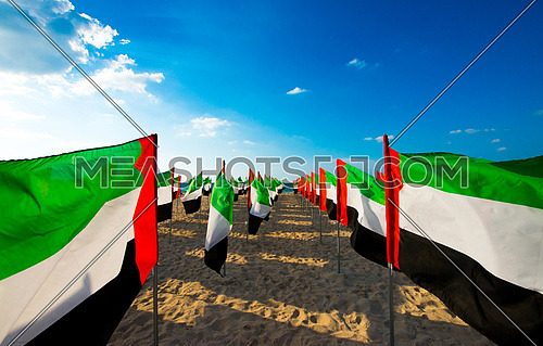 hundreds of uae flags on at the sea shore