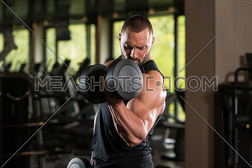 Bodybuilder Working Out Biceps In The Gym - Dumbbell Concentration Curls