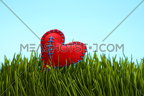 One red felt craft stitched heat in fresh green grass over clear blue sky, close up, low angle view