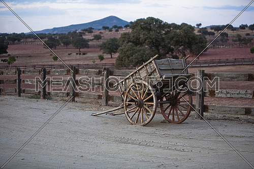 Carriage of wood, Rural landscape near Linares, Spain