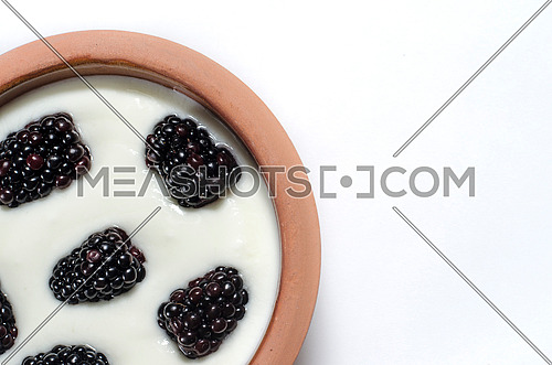 Close up on a pottery bowel full on yogurt decorated with fresh blackberries