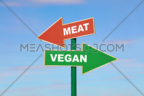 Road signpost with two arrows, green and red, with meat and vegan words, directing to different directions, left and right, over clear blue sky, low angle side view
