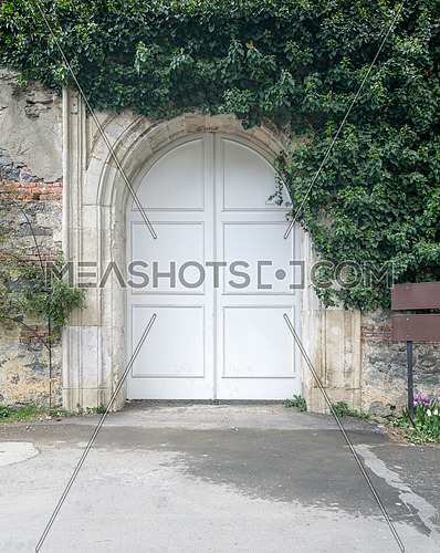 Closed arched white wooden door surrounded by green leaves on old grunge stone wall, Yeldiz Public Park, Istanbul, Turkey