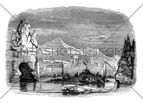 Adelie, discovery February 21, 1840, vintage engraved illustration. Magasin Pittoresque 1842.