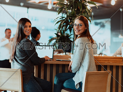 One-on-one meeting.Two young businesswomen sitting at a table in a cafe. Girl shows colleague information on the laptop screen. Girl using smartphone, blogging. Teamwork, business meeting. Freelancers working.