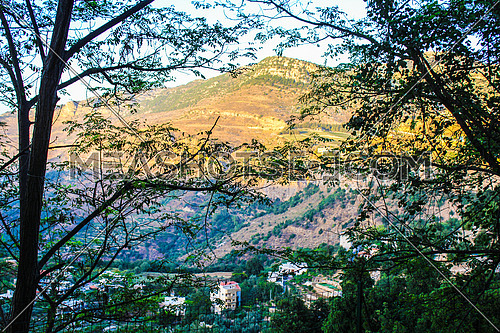 A shot of mountains behind trees in the town of Jezzine Lebanon