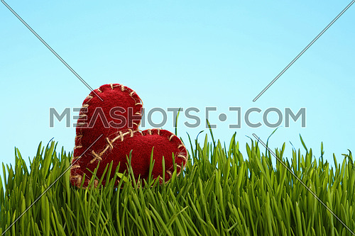One red brown felt craft twine stitched heat in fresh green grass over clear blue sky, close up, low angle view