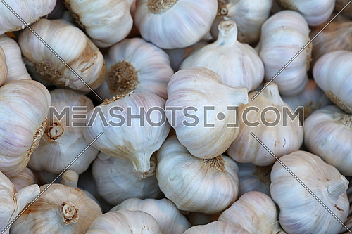Fresh white garlic bulbs cloves sale on retail food market stall display, close up, elevated high angle view